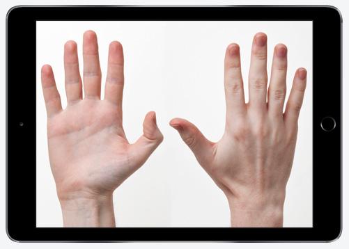 pp-hands-1.jpg